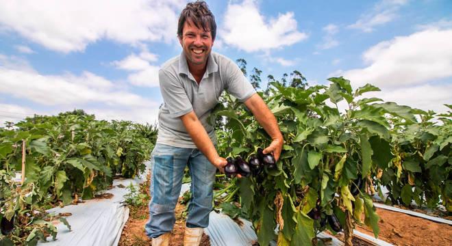 Startups se unem a pequenos agricultores e criam negócios napandemia