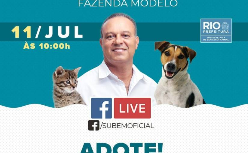 Rio de Janeiro City Hall performs Live for animal adoption during social isolation